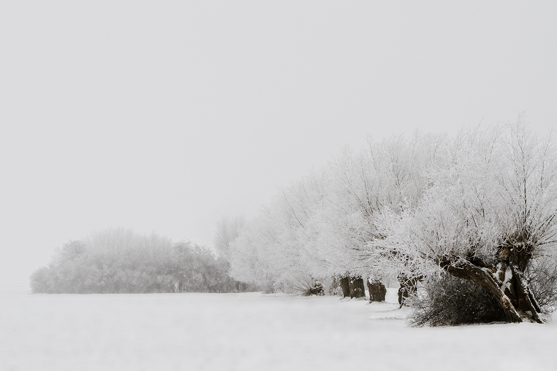 Motiv 540 |  | Foto Matthias Enning