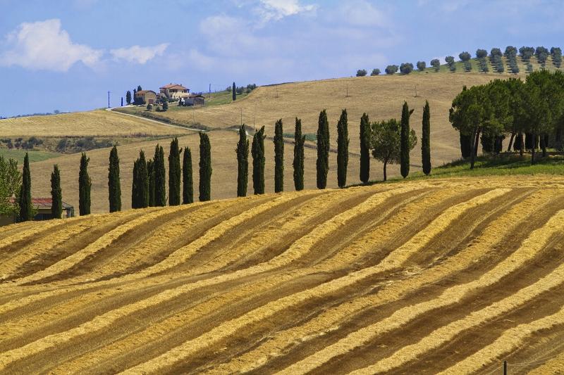Berge in der Toskana |  |