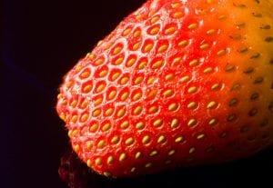 Erdbeere  |  |