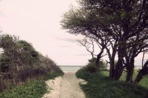 Der Weg zum Strand Motiv 1047 | Sebastian Klaffka |