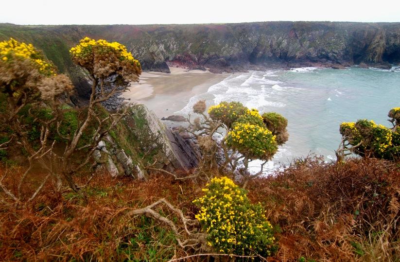 Bucht Wales Großbritannien Motiv 1244 |  |