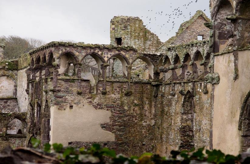 Burgruine Wales Großbritannien Motiv 1247     