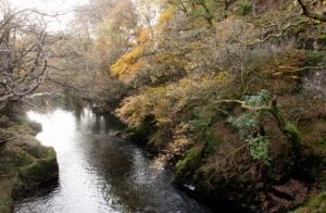 Fluss Wales Großbritannien Motiv 1249 <br />Fritz Meffert <br />