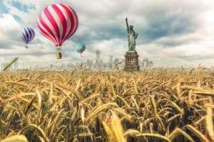 Freedom Motiv 1386 | Charles Schrader |