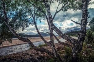 Loch Lochy Motiv 1418 | Charles Schrader |