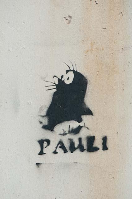 Paul |  |